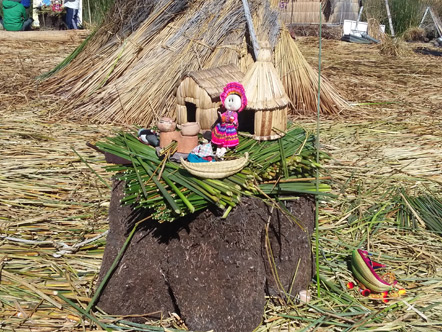 The Uros Islands are built on the root structure of the totora reed. They tie the roots together to build