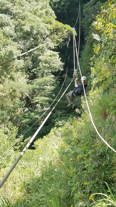 Ziplining through the trees.