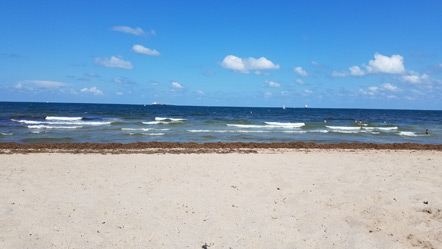 The beach in Fort Lauderdale. We got to see the Pacific Ocean and Atlantic Ocean this trip.