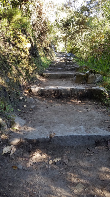 The trail to the entrance of Machu Picchu.